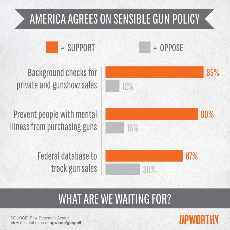 Americans Support Reasonable Gun Regulation